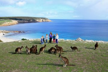 AUSTRALIA WONDER  10 NIGHTS 11 DAYS 2N Melbourne