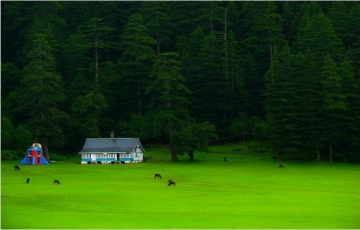 Let's Travel Unconventional With Himachal and Punjab