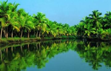 Kerala with Backwater & Wild Life