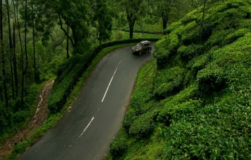 Poetry of nature is never dead in kerala