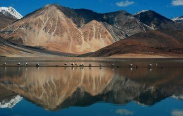 Ladakh Delight 5N/6D