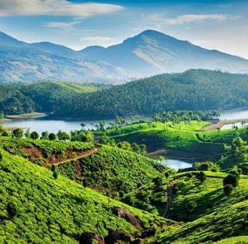 Kerala Honeymoon Tour Package Hills And Backwater