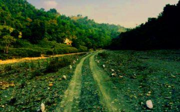 Jungle Survival Programme , Rajaji Tiger Reserve Rishikesh