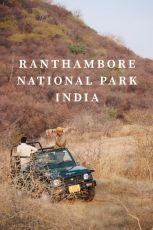 Ranthambore Tiger Safari Package -Luxury