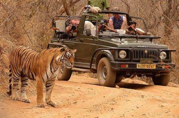 Rajasthan tour - The Land of Heritage