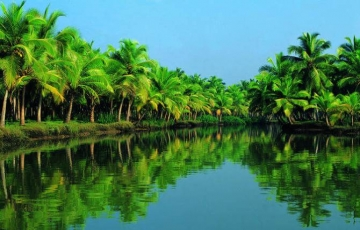 Unforgettable Holidays In Kerala