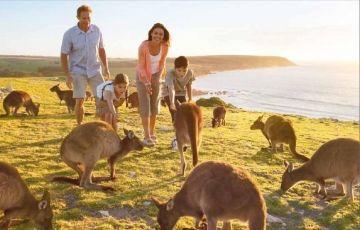 Australia Honeymoon Package