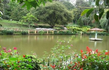 Bandipur and Ooty Package