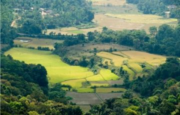 Kerala Deluxe Package - 7 Nights / 8 Days