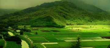 Alluring Mysore, Coorg & Ooty