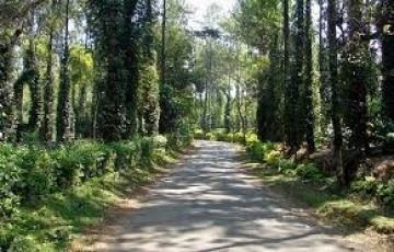 COORG TOUR PACKAGE 2 PAX 3 DAYS