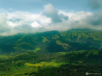 HOLIDAYS TO COORG