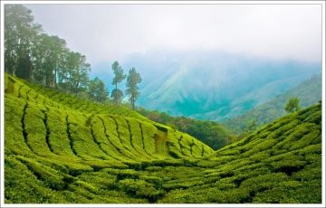 Special Package for South India - 06 Nights / 07 Days