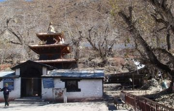 Muktinath Tour 08N -09D