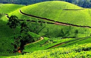 Kodaikanal Package for 3D/2N