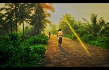 Kerala Magic in the Monsoon