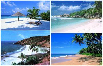 Best Goa Tour