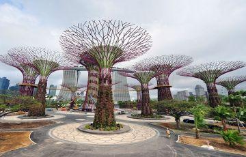 Shinning Singapore Package