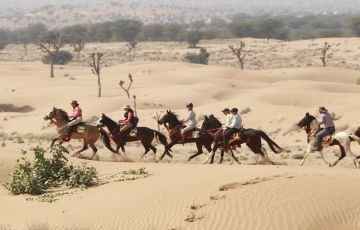 Authentic India Horse Safari Trip