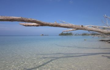 Admirable Andaman Tour Package