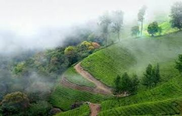 Beautiful Kerala Tour 5Nights/6Days