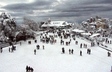 Superb Tour for Shimla Manali Special