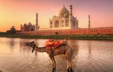 Royal Rajasthan Tour with Amritsar 19Days/18Nights