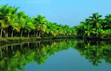Amazing Tour for Kerala 6Nights/7Days