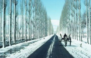 Luxury Delhi- Kashmir & Goa Tour 14Days/13Nights