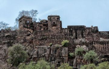 Ranthambore Wildlife Tour 3Days/2Nights