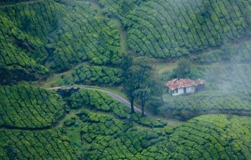 Kerala Package 4 Nights / 5 Day