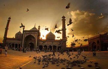 Incredible India Tour 24 Nights / 25 Days