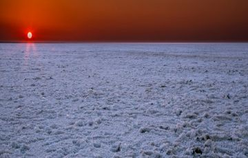 White Rann and the Asiatic Lions Gujarat Special
