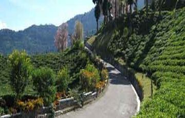 Gangtok With Pelling