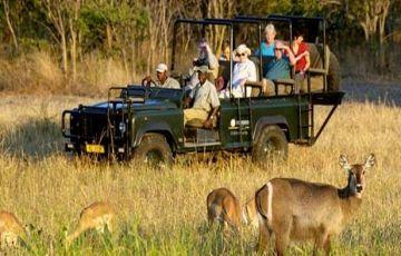 Gujarat Wildlife Tours