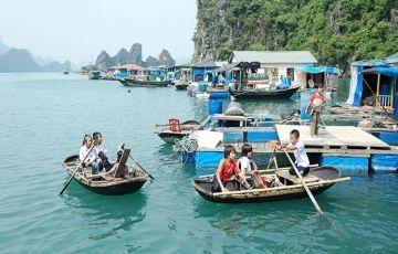 Cruise In Halong Bay Amazing Tour