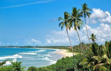 Kandy to Colombo Tour Package