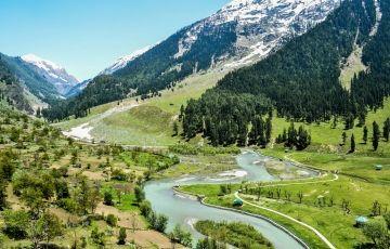 Jammu to Patnitop Tour