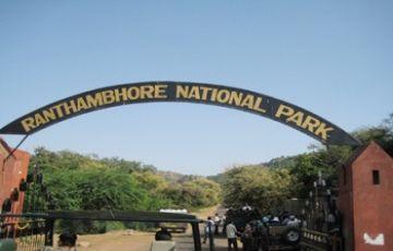 Ranthambore Weekend Tour