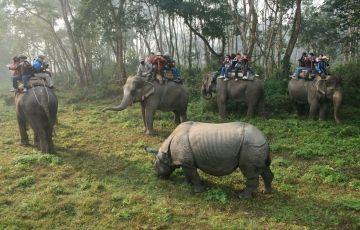 Nepal - Kathmandu, Pokhara & Chitwan Tour Package