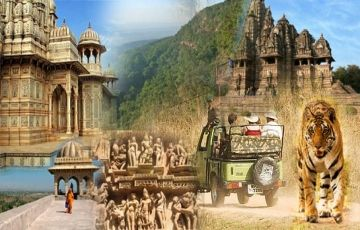 Amazing Central India Wildlife Tour