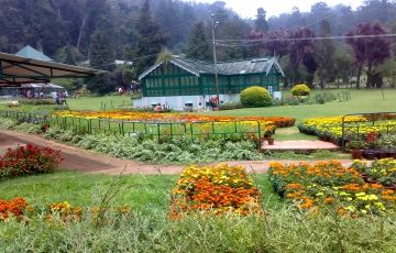 Enjoy Nature At Ooty