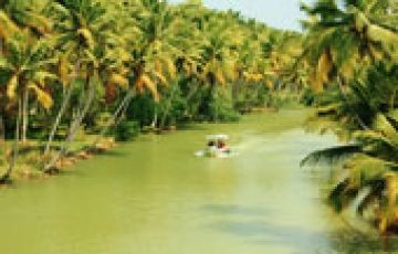 Great Kerala Tour (5Nights/6Days)