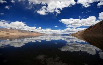 Wildlife Tours in Ladakh
