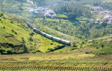 Ooty Package 2N/3D from Chennai
