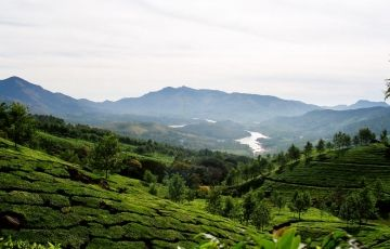 Kerala With Wayanad Athirapally