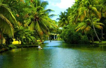 A Week In Kerala