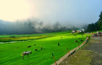 Delhi - Shimla - Manali - Dharamshala -Dalhousie - Khajjiar