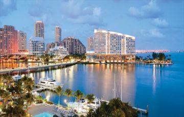 Amazing Miami