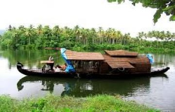 Palm and Backwater Tour